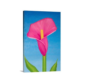 A side view of a painting by fine artist Nancy McLennon, of a single Rosy pink lily on sky blue background