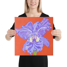 Load image into Gallery viewer, Canvas Print - Iris explosion on red - FREE SHIPPING