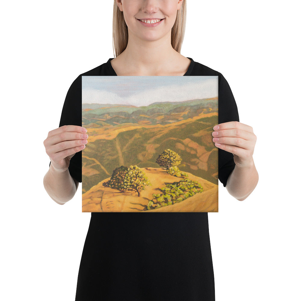 Canvas Print - Cal's Delight - Lucas Valley, CA - FREE SHIPPING