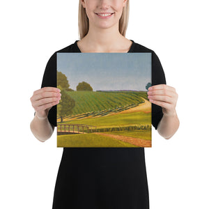 Canvas Print - Sonoma Chardonnay vineyard with footbridge - FREE SHIPPING