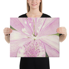 Load image into Gallery viewer, Canvas Print - Light pink Lily - FREE SHIPPING
