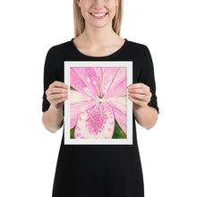 Load image into Gallery viewer, Framed Print - Light Pink Lily - FREE SHIPPING