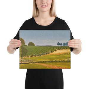 Canvas Print - Sonoma Chardonnay vineyard with footbridge