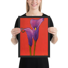 Load image into Gallery viewer, Framed Print - Purple Calla lilies - FREE SHIPPING