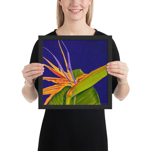 Framed Print - Bird of Paradise on Purple - FREE SHIPPING