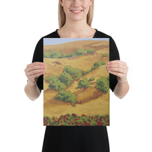 Load image into Gallery viewer, Canvas Print - Sonoma hills with red roses - FREE SHIPPING