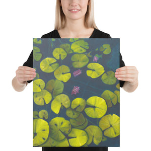 Canvas Print - Waterlilies - FREE SHIPPING