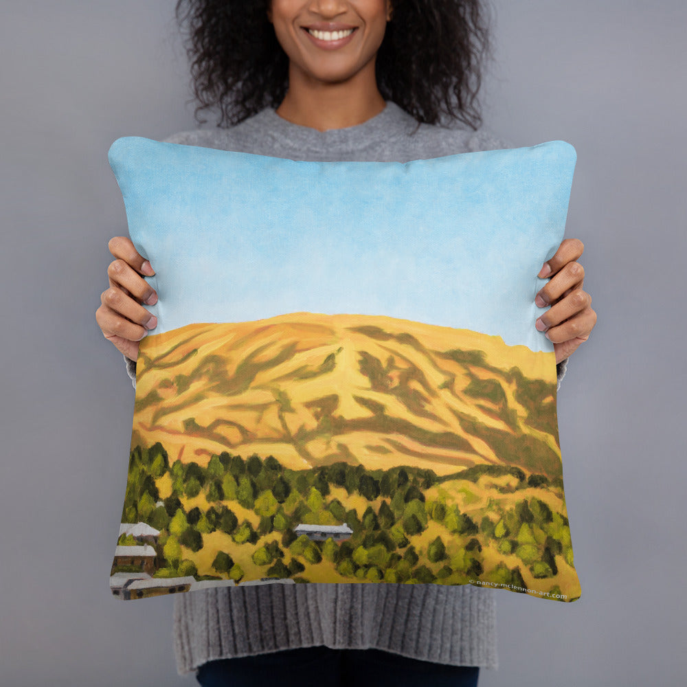 Decorative Pillow - Kentfield Hills - FREE SHIPPING
