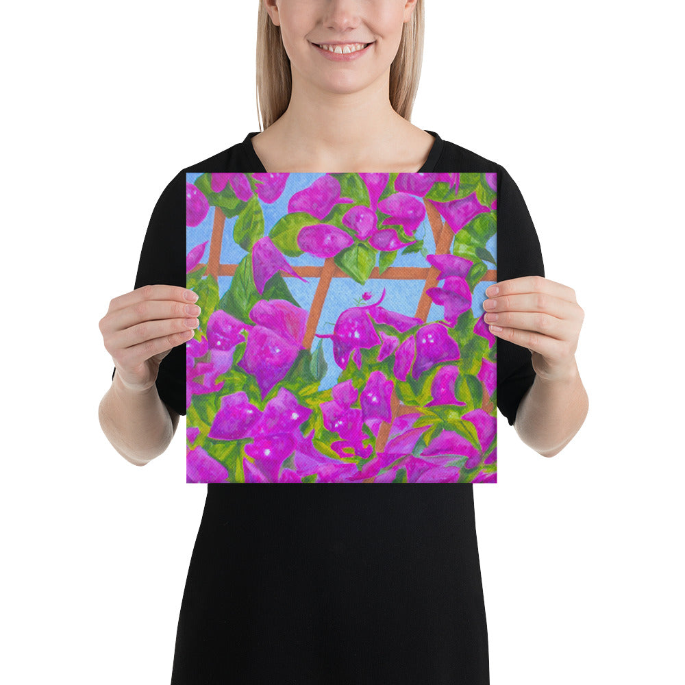 Canvas Print - Bougainvillea - FREE SHIPPING