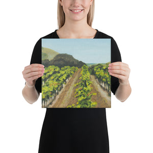 Canvas Print - Napa Valley vineyard before harvest 2 - FREE SHIPPING
