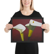 Load image into Gallery viewer, Framed Print - White Calla lilies on red - FREE SHIPPING
