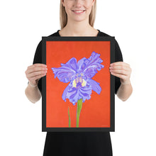 Load image into Gallery viewer, Framed print – Iris explosion on red - FREE SHIPPING
