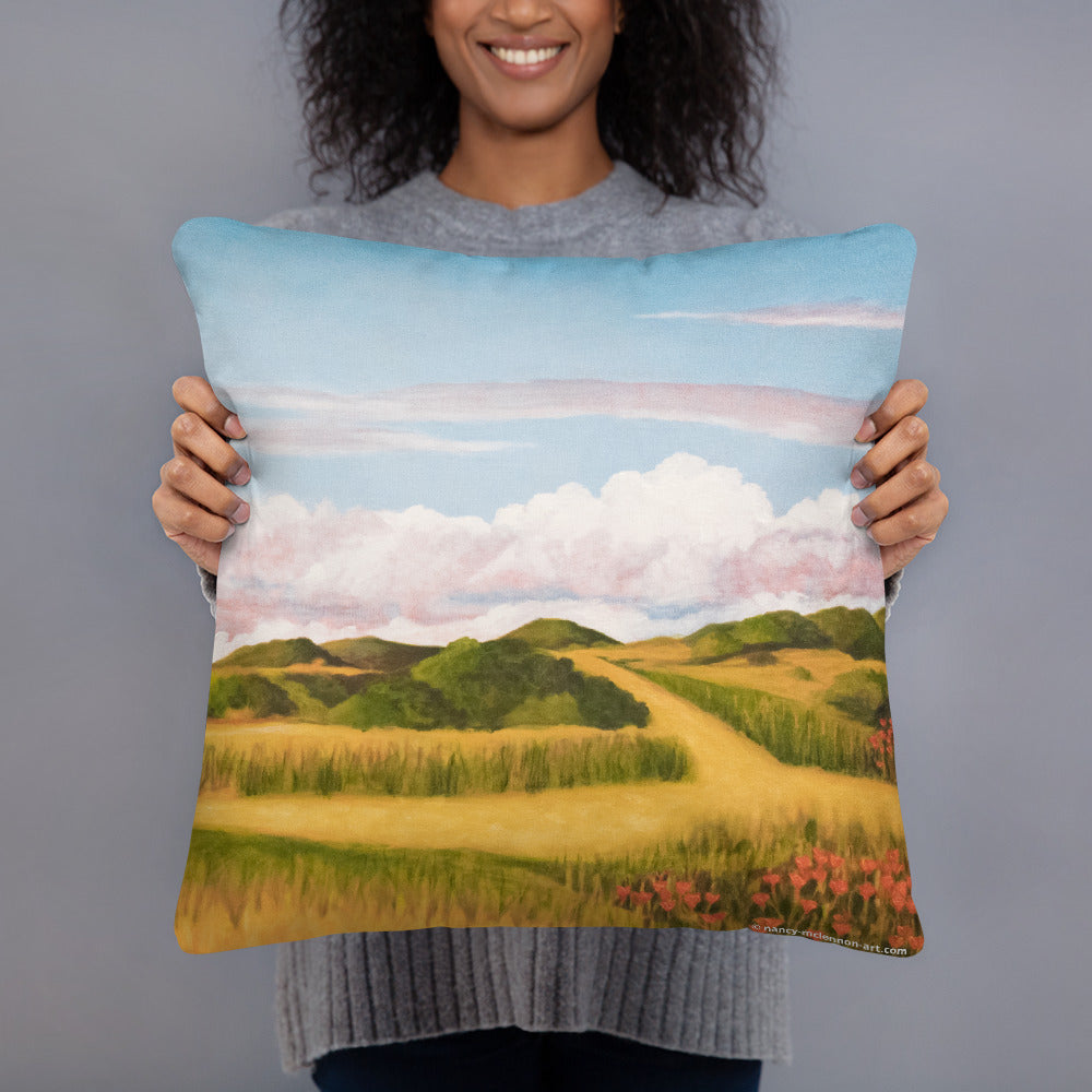 Decorative Pillow - Spring clouds and CA poppies 2 - FREE SHIPPING