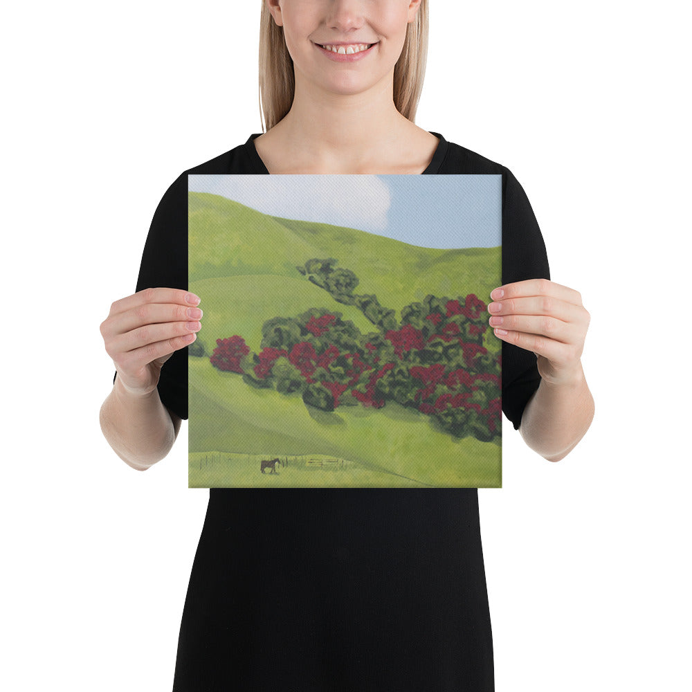 Canvas Print - Sonoma Hills in winter - FREE SHIPPING