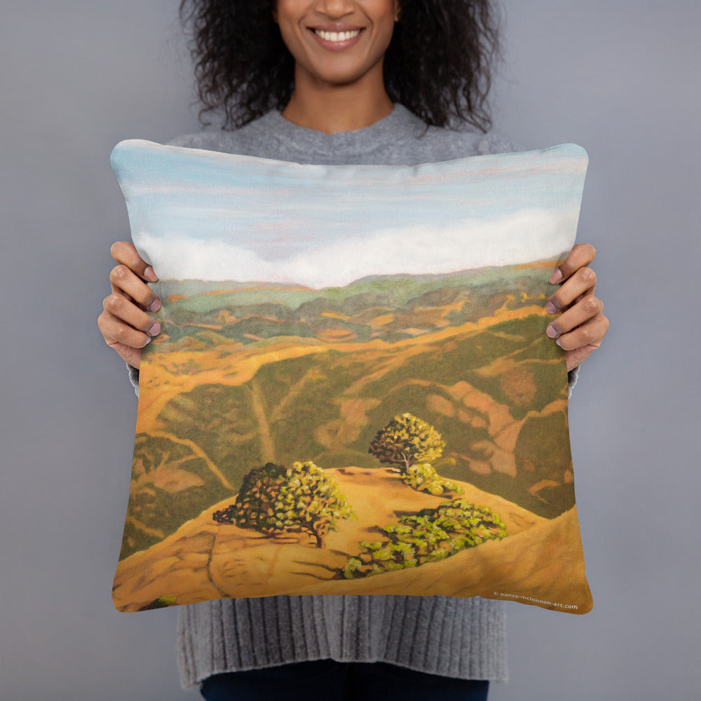 Decorative Pillow - Cal's Delight - Lucas Valley, CA - FREE SHIPPING