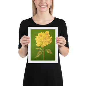 Framed print – Yellow Rose - FREE SHIPPING