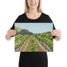 Load image into Gallery viewer, Canvas Print - Napa Valley vineyard before harvest 2 - FREE SHIPPING
