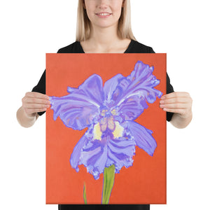 Canvas Print - Iris explosion on red - FREE SHIPPING
