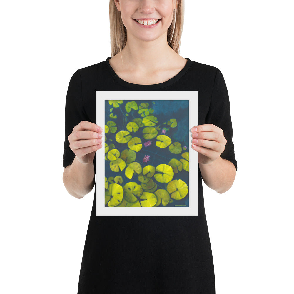 Framed Print - Waterlilies - FREE SHIPPING