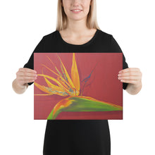 Load image into Gallery viewer, A canvas print of a painting, by fine artist Nancy McLennon, of a green, yellow and purple Bird of Paradise flower on a rust red background, being held by a woman.