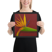 Load image into Gallery viewer, Framed Print - Bird of paradise on dark red - FREE SHIPPING
