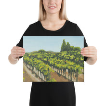Load image into Gallery viewer, Canvas Print - Napa Valley vineyard before harvest 1 - FREE SHIPPING