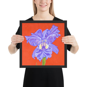 Framed print – Iris explosion on red - FREE SHIPPING