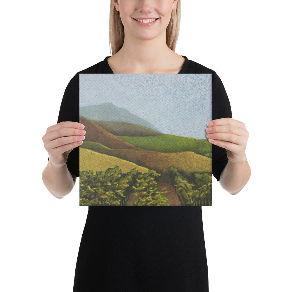 Canvas Print - Napa Valley vines in the fall - FREE SHIPPING