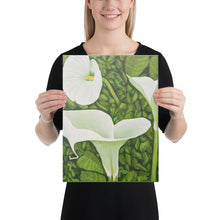 Load image into Gallery viewer, Canvas Print - Creamy White Calla Lilies - FREE SHIPPING