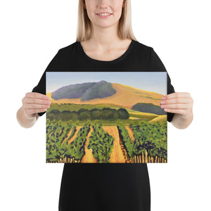 Canvas Print - Lush purple vineyards in golden hills
