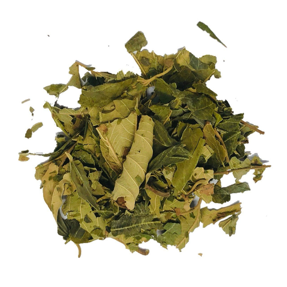 Sidr Leaves (30g) - Sidr Leaf - Ruqyah