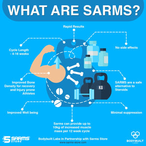 what are sarms bodybuilt labs