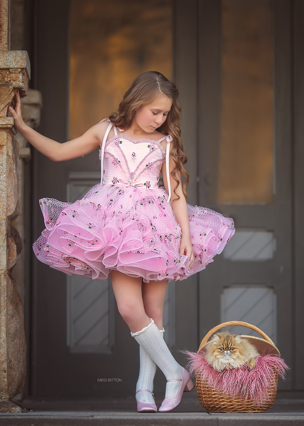 Daisy Twirl Dress