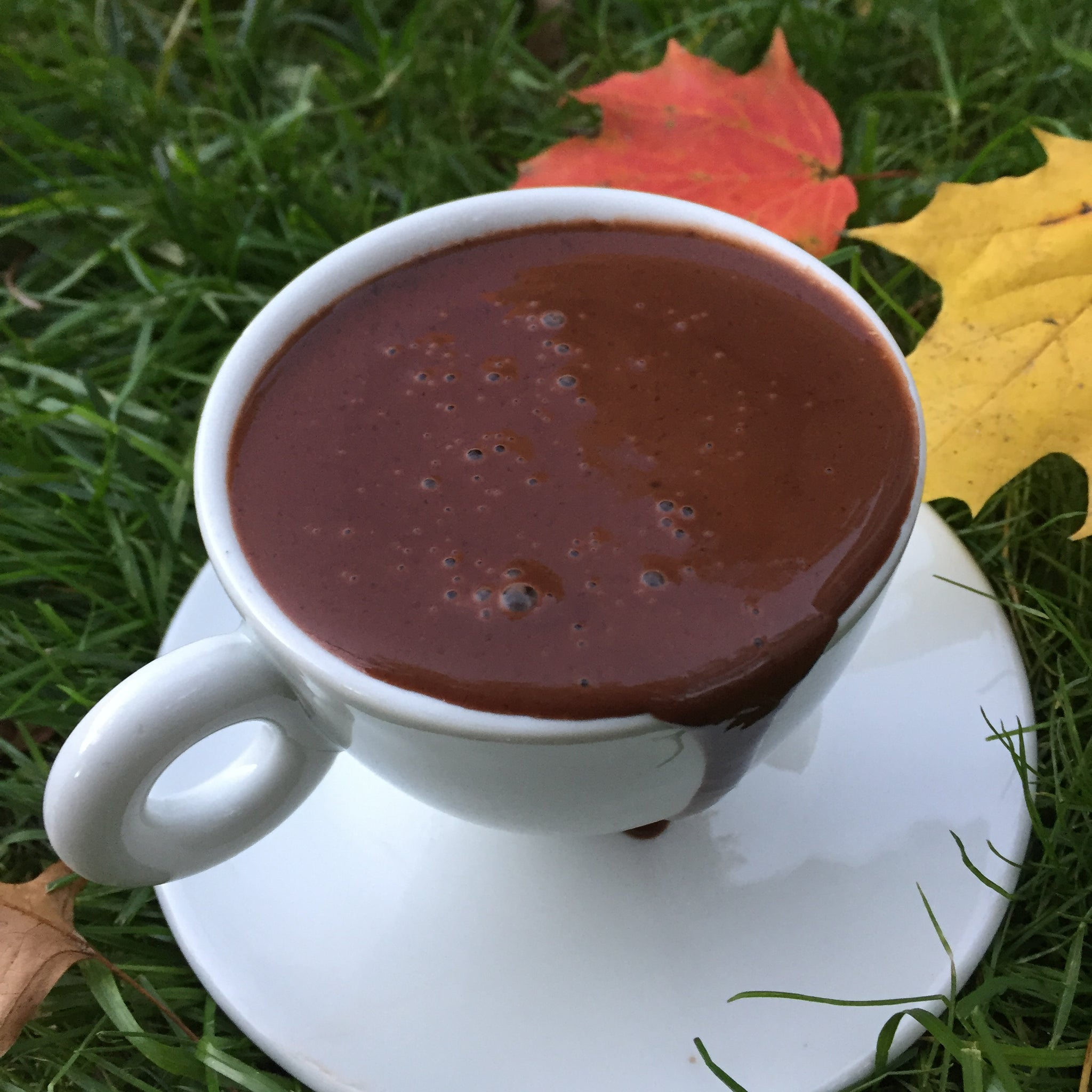 CIÒBON / ITALIAN STYLE HOT CHOCOLATE MIX.  15 oz.