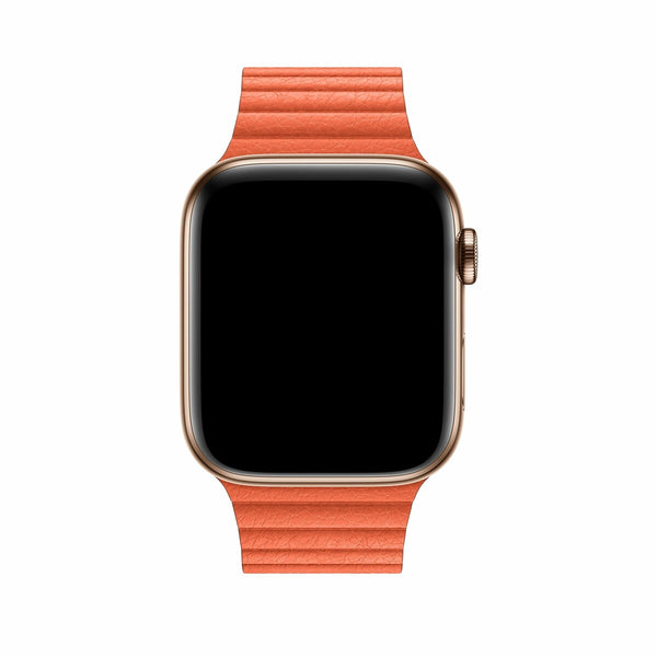 magnetic loop armband für apple watch orange awab passend zu Serien 2, 3, 4, 5, 38mm 40mm 42mm 44mm