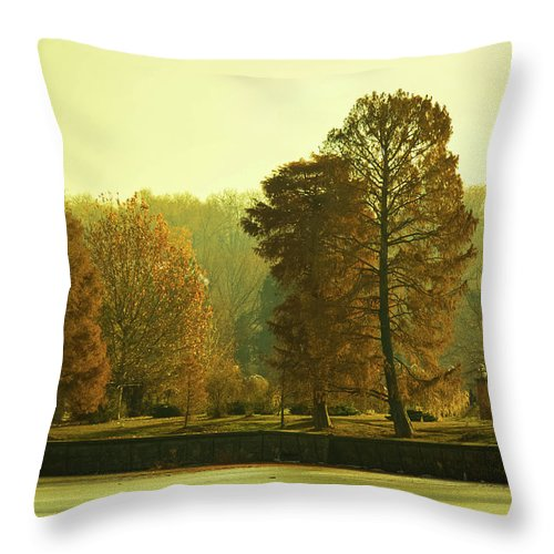 Nature Impressions - Throw Pillow