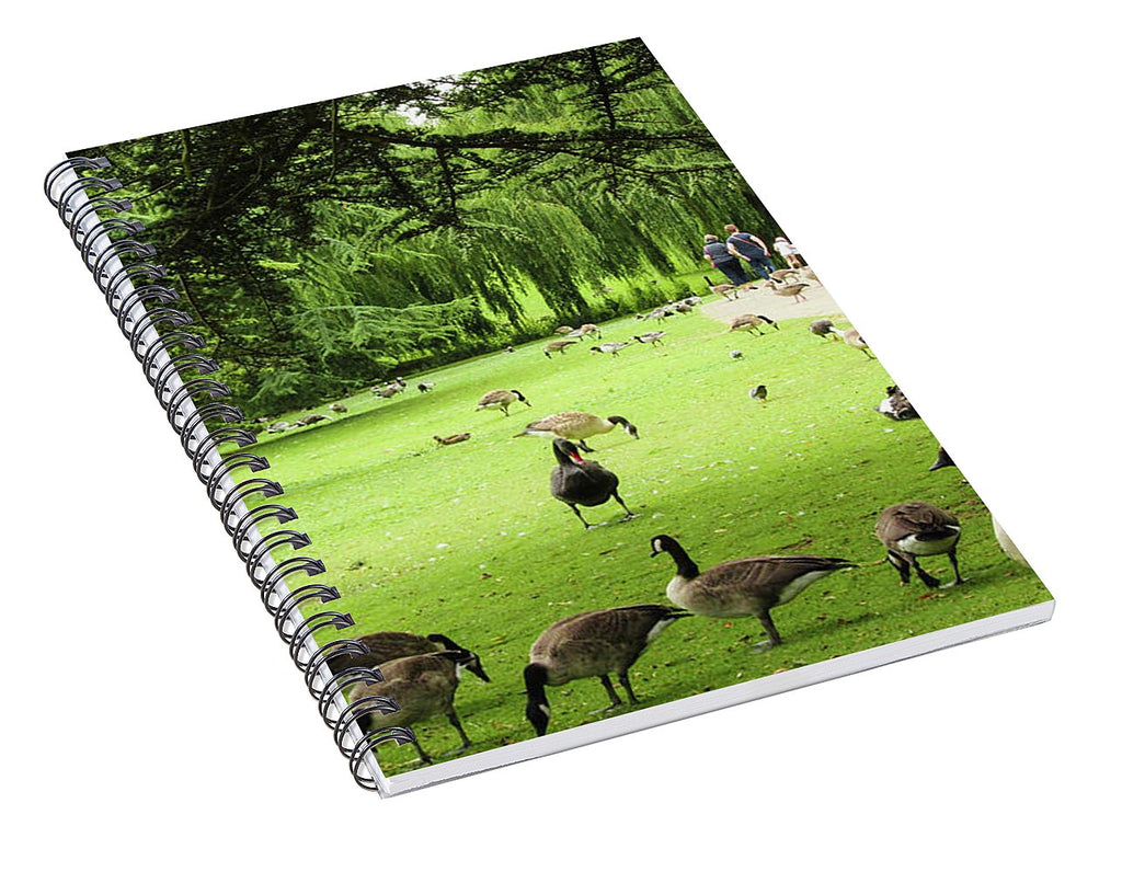 A Leap From Urban To Serene - Spiral Notebook