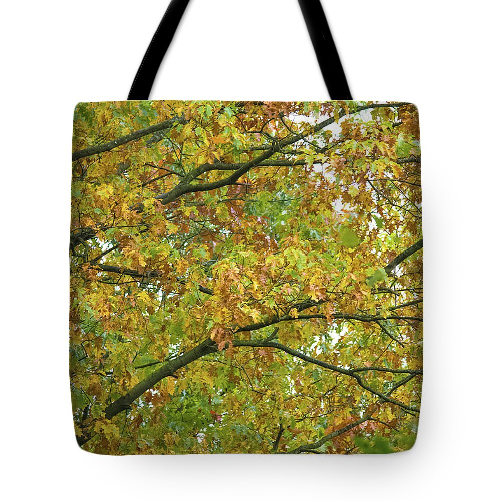 Autumn Colors  - Tote Bag