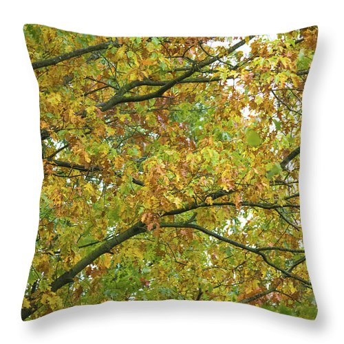 Autumn Colors  - Throw Pillow