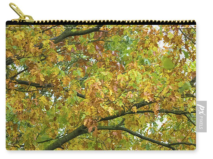 Autumn Colors  - Carry-All Pouch