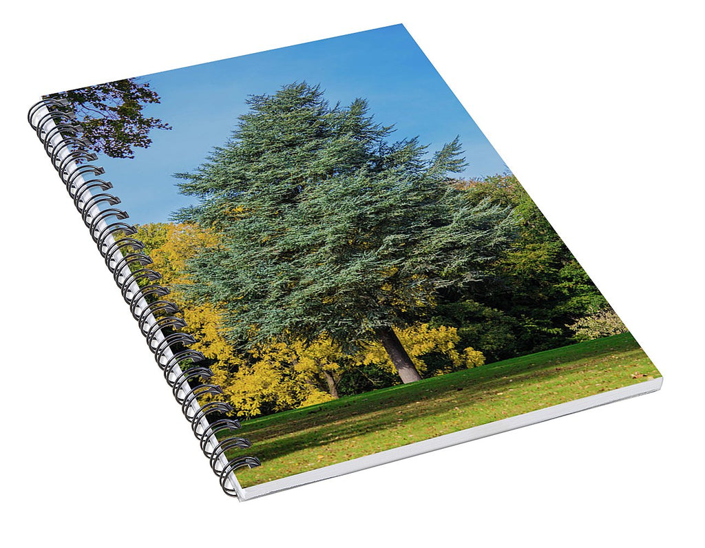 Autumn Leaf Color - Spiral Notebook