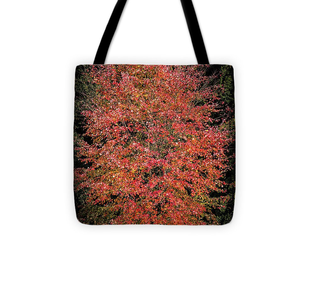 Autumn Touch  - Tote Bag