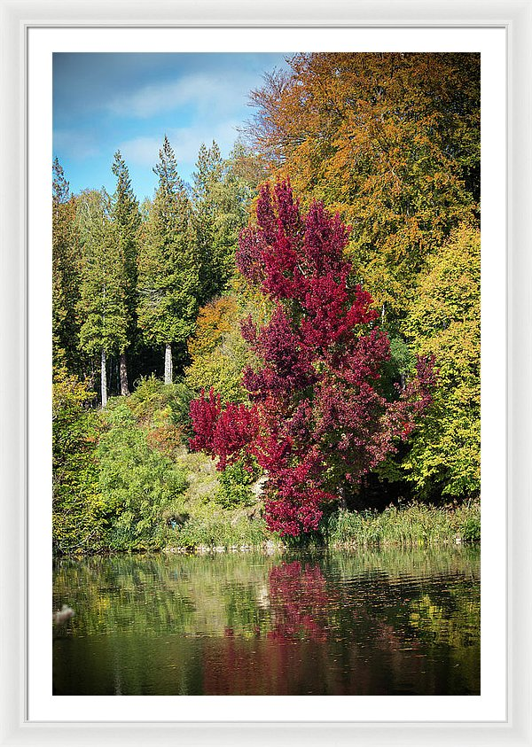 Autumnal View In Belgium - Framed Print