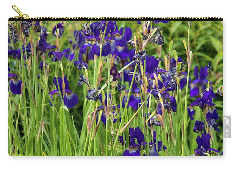 Blue Irises - Carry-All Pouch
