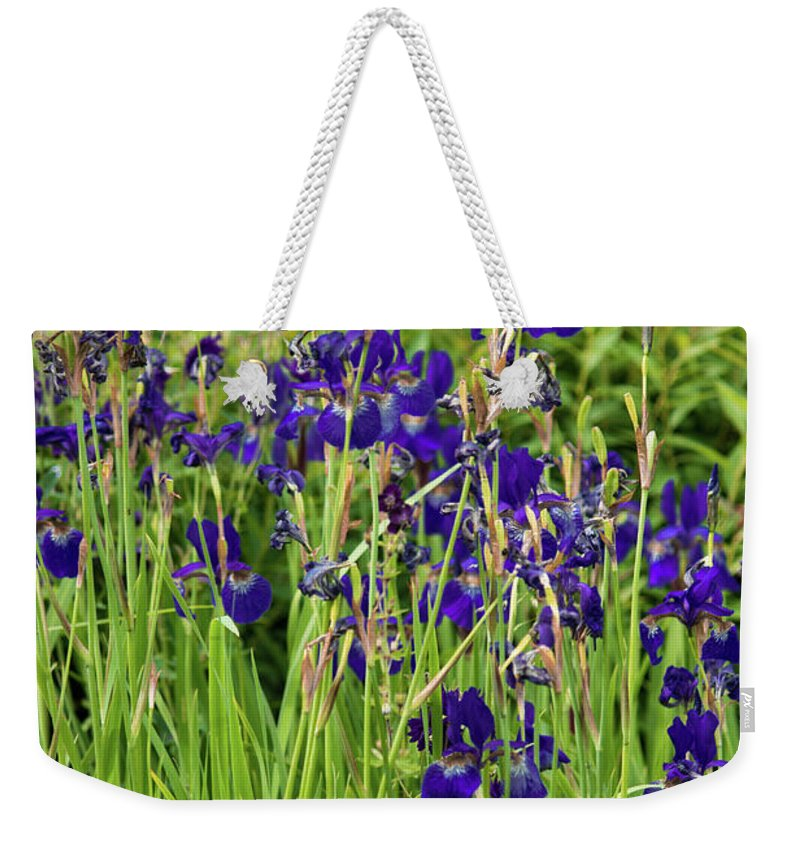 Blue Irises - Weekender Tote Bag