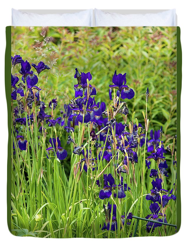 Blue Irises - Duvet Cover