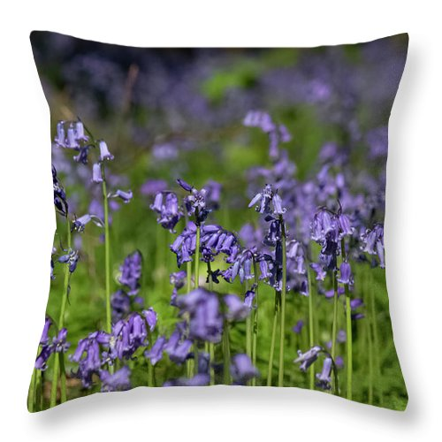 Bluebells - Throw Pillow
