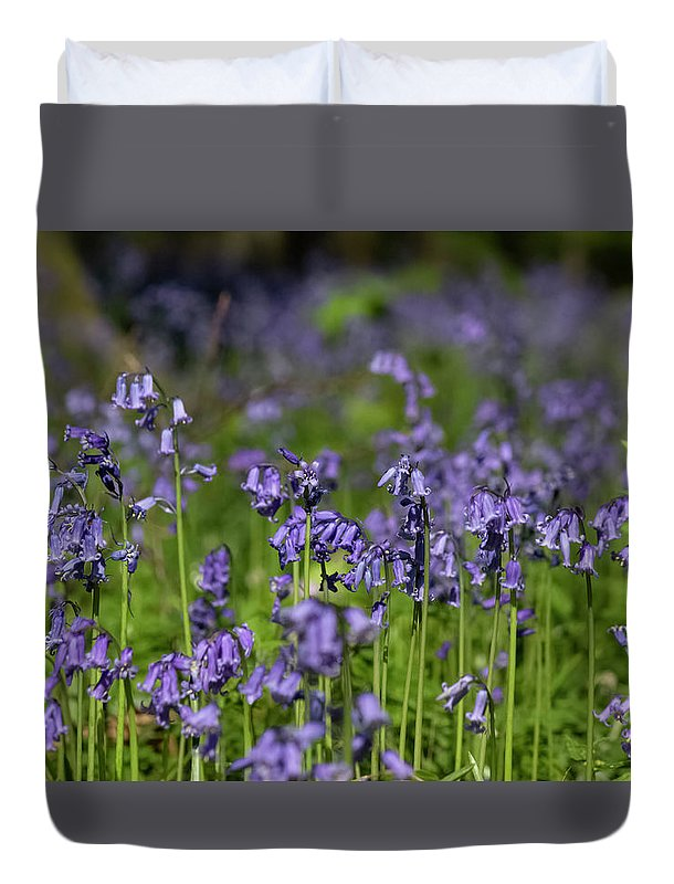 Bluebells - Duvet Cover