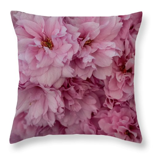 Cherry Flowers - Throw Pillow