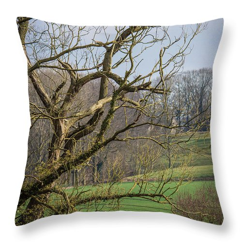 Countryside In Belgium - Throw Pillow
